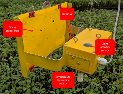 Automated Insect Pest Monitoring and Analysis Using Imaging and Environmental Sensor Network